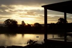 a lilie sunset