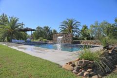 lilies poolside pool
